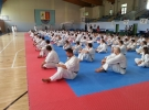 Puch, Kogutowicz i Kumor powołani na Mistrzostwa Europy Juniorów!