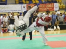Mistrzostwa Europy Karate Kyokushin w Katowicach