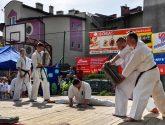 Pokaz Karate na Pikniku Rodzinnym przy ZSS nr 1