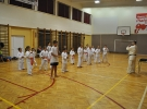 Egzamin na stopnie dziecięce w Łososinie Górnej