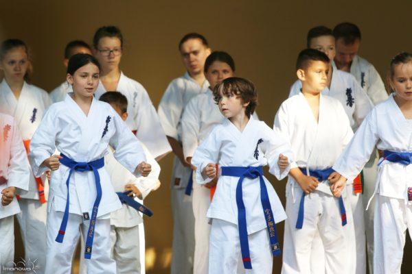 "Pokaz Karate Kyokushin podczas imprezy ""Lato w Parku"""