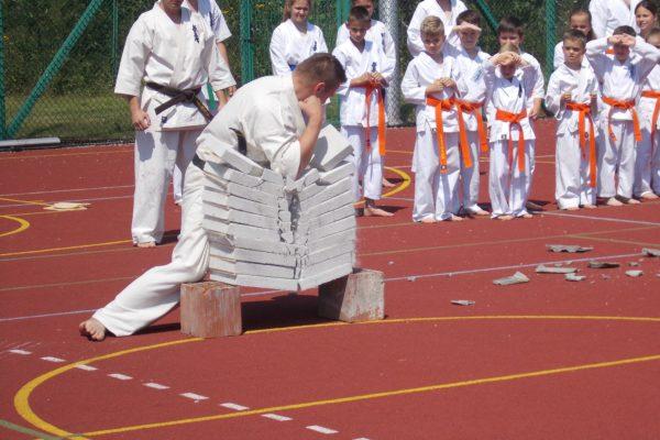 Pokaz Karate podczas Pikniku Rodzinnego w Łososinie Górnej