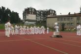 """Pokaz Karate w limanowskiej """"trójce"""" na Pikniku Integracyjnym"""