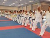 Seminarium Karate Kyokushin w Dojo Stara Wieś