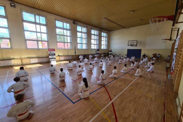 Dodatkowa sesja letniego egzaminu na stopnie szkoleniowe kyu w dojo Limanowa